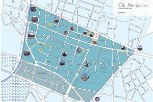 CIL Monplaisir Lyon 8 - délimitation territoriale